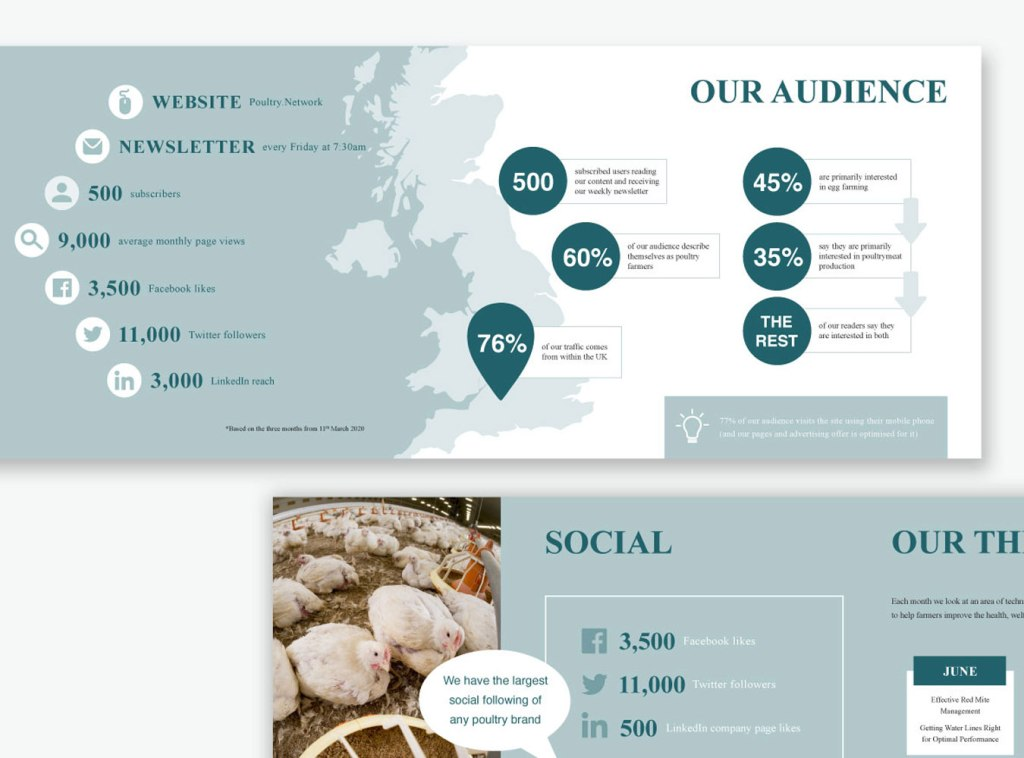 PDF design for Poultry Network by Laura Hodgkinson Creative, North Wales graphic design